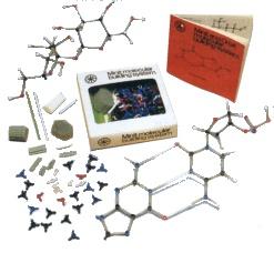BioquimicaMinit